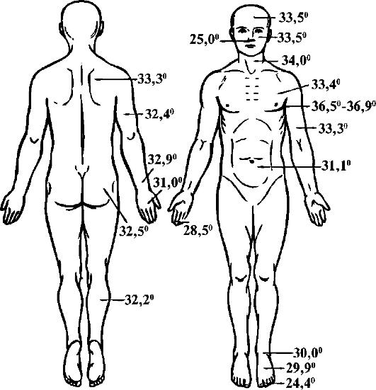 Температура кожи человека